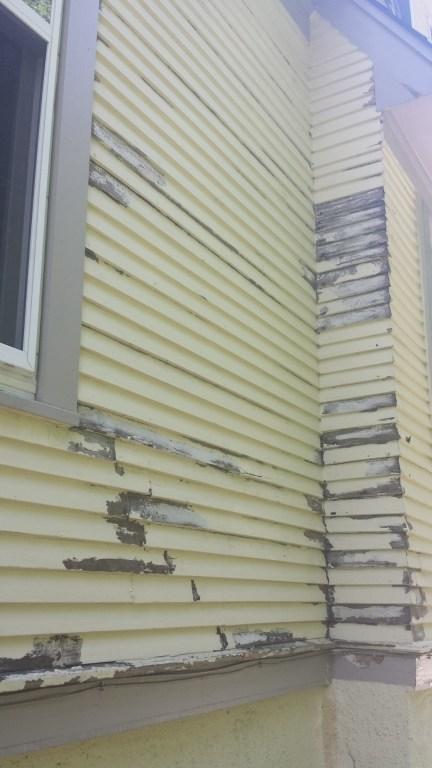 exterior house painter wayner il